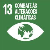 13 Combate às alterações climáticas